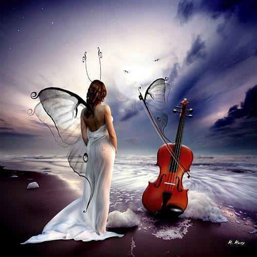 Serenade of love