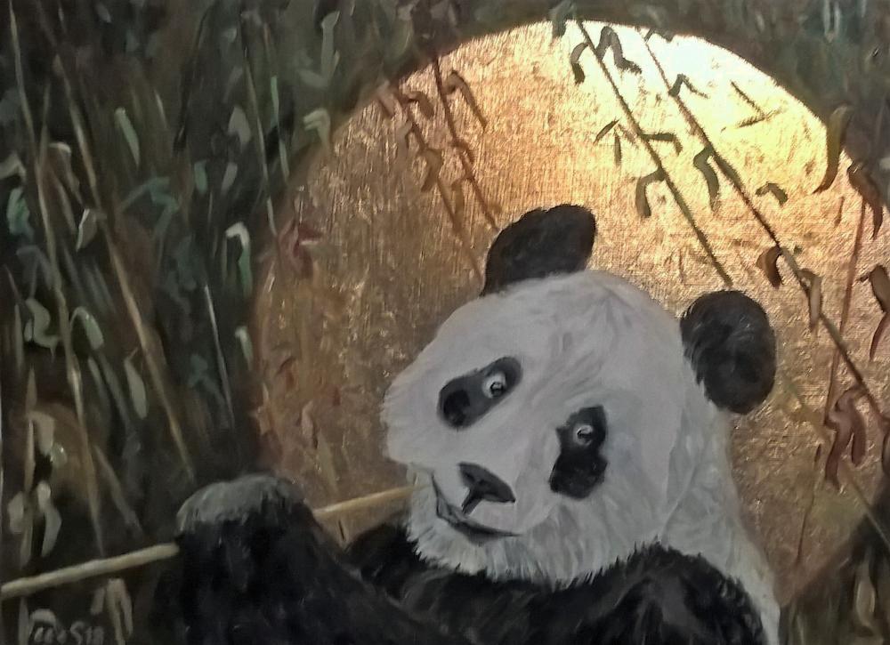 Panda, Oudemuragie-Serie